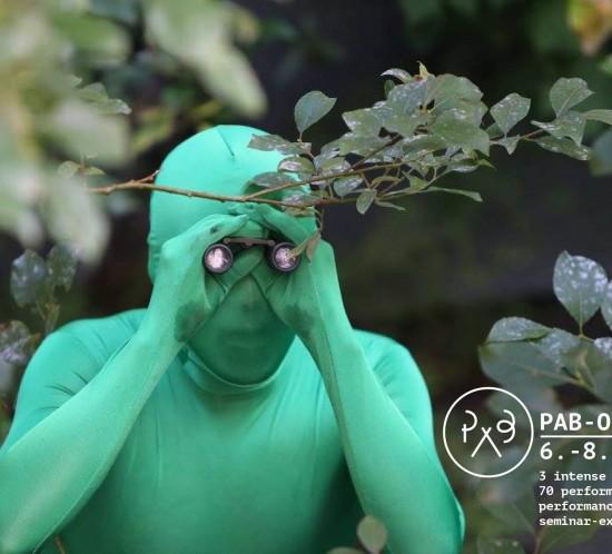 PAB_o2017